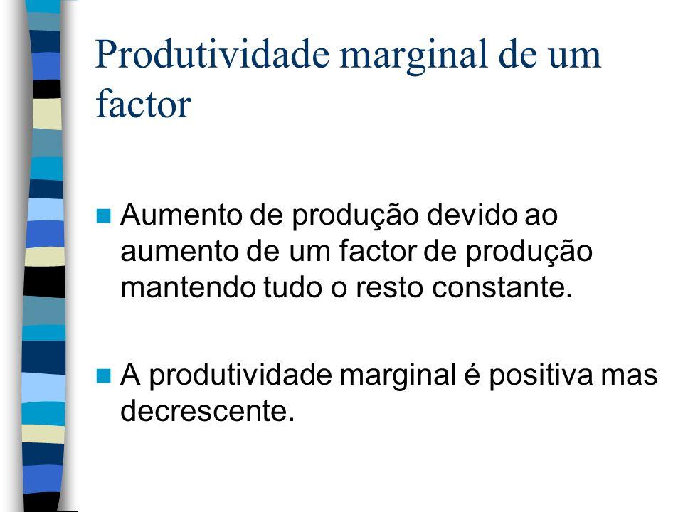 Produtividade marginal de um factor Aumento de produção devido ao aumento de um factor de produção mantendo tudo o resto constante. A produtividade ma