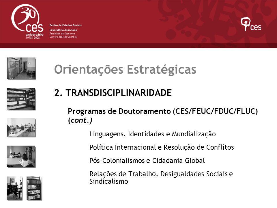 Julho 2007 Orientações Estratégicas 2. TRANSDISCIPLINARIDADE Programas de Doutoramento (CES/FEUC/FDUC/FLUC) (cont.) Linguagens, Identidades e Mundiali