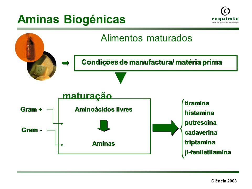 Ciência 2008 Aminas Biogénicas Aminas biogénicas mg/g Triptamina -Fenil etilamina PutrescinaCadaverinaHistaminaTiraminaEspermidinaEspermina Chouriço Salsichão 40 30 2 20 160 130 20 30 40 30 320 300 4343 20 Queijo DOP 30 dias maturação 5518220140280n.d.5 Queijo DOP 30 dias maturação 20715180350130353 microrganismos presentes actividade da água temperatura de armazenamento tempo de maturação
