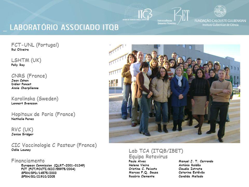 Financiamento European Commission (QLRT-2001-01249) FCT (FCT/POCTI/BIO/55975/2004) SFRH/BPD/14575/2003 SFRH/BD/21910/2005 Lab TCA (ITQB/IBET) Equipa R