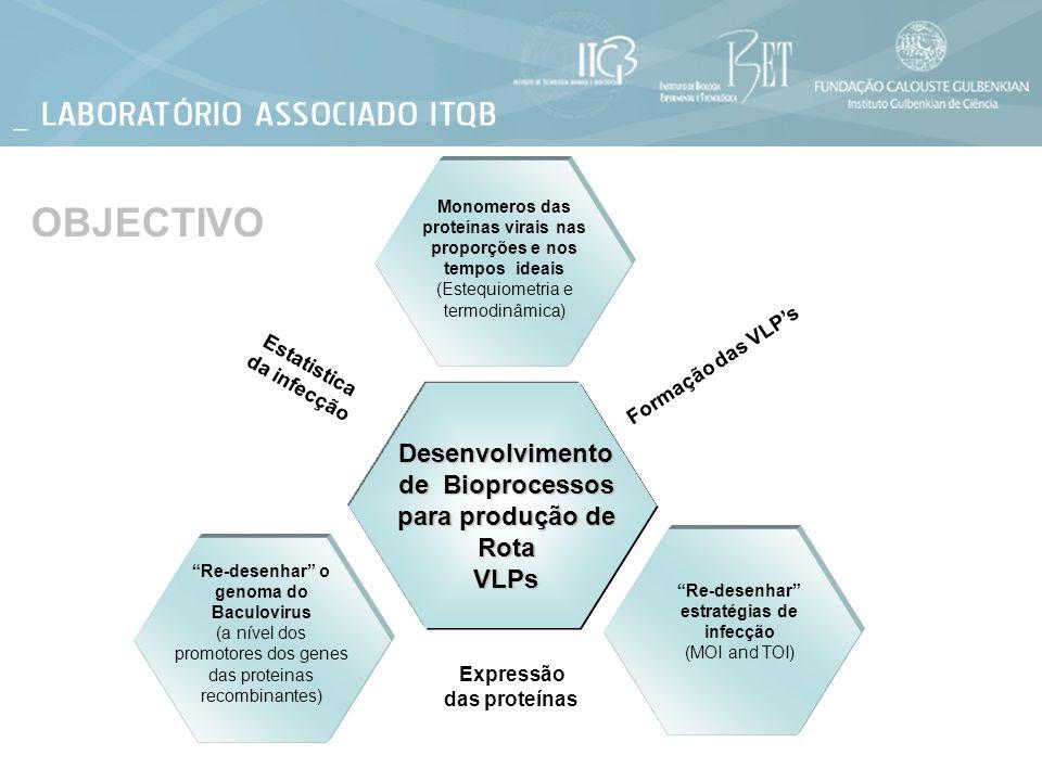 Desenvolvimento de Bioprocessos para produção de Rota VLPs Formação das VLPs Estatistica da infecção Expressão das proteínas Re-desenhar o genoma do B