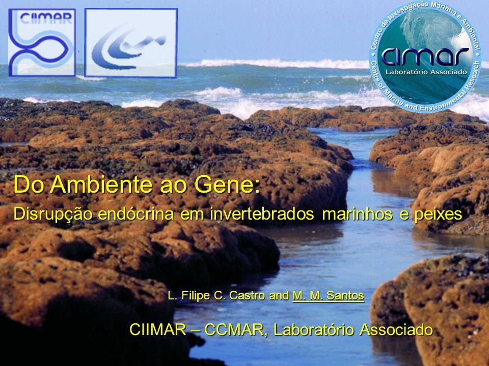 Do Ambiente ao Gene: Disrupção endócrina em invertebrados marinhos e peixes L. Filipe C. Castro and M. M. Santos CIIMAR – CCMAR, Laboratório Associado