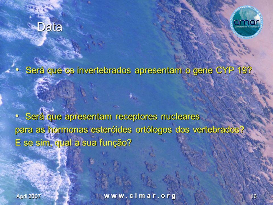 April 2007 w w w. c i m a r. o r g 16 Data Será que os invertebrados apresentam o gene CYP 19? Será que os invertebrados apresentam o gene CYP 19? Ser