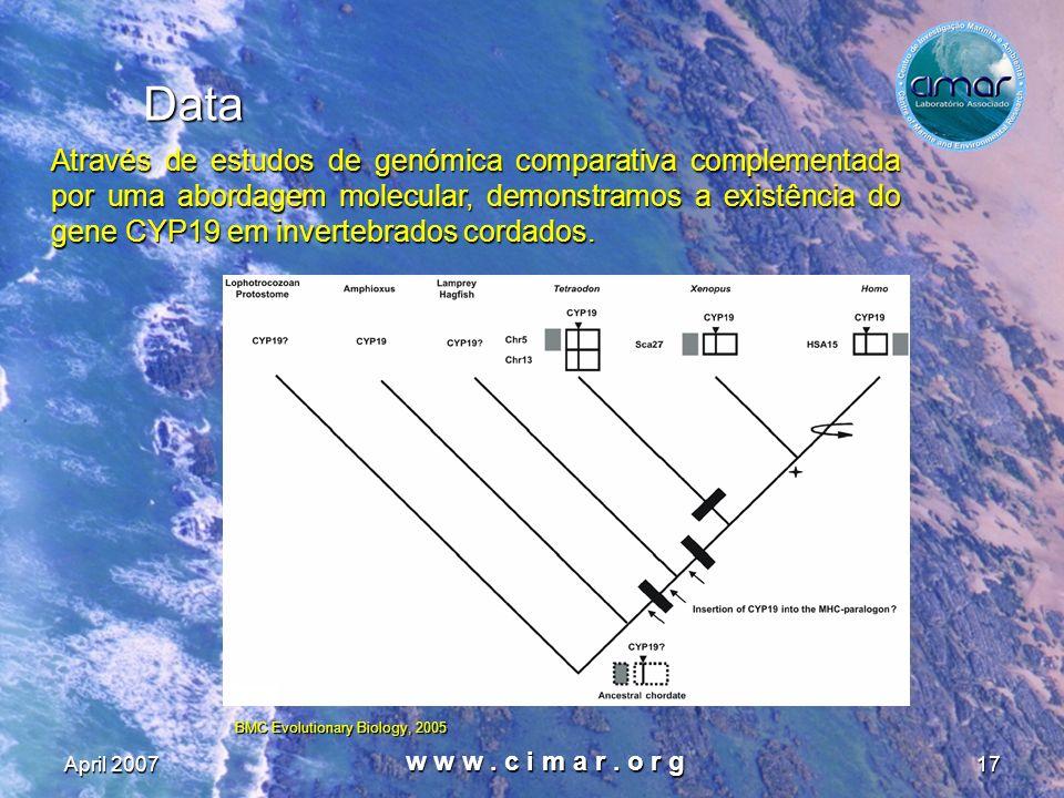 April 2007 w w w. c i m a r. o r g 17 Data Através de estudos de genómica comparativa complementada por uma abordagem molecular, demonstramos a existê