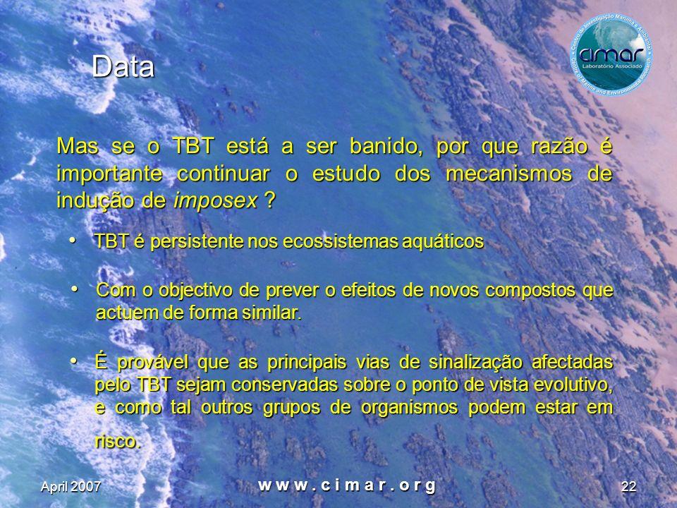 April 2007 w w w. c i m a r. o r g 22 Data Mas se o TBT está a ser banido, por que razão é importante continuar o estudo dos mecanismos de indução de