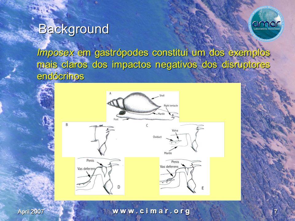April 2007 w w w. c i m a r. o r g 7 Background Imposex em gastrópodes constitui um dos exemplos mais claros dos impactos negativos dos disruptores en
