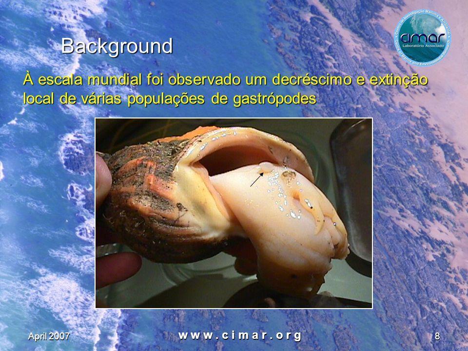 April 2007 w w w. c i m a r. o r g 8 Background À escala mundial foi observado um decréscimo e extinção local de várias populações de gastrópodes À es