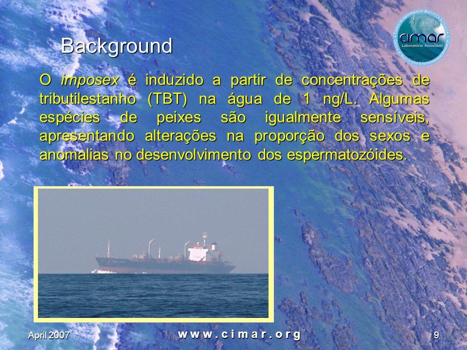 April 2007 w w w. c i m a r. o r g 9 Background O imposex é induzido a partir de concentrações de tributilestanho (TBT) na água de 1 ng/L. Algumas esp
