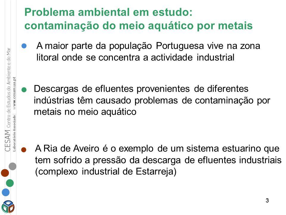 33 Problema ambiental em estudo: contaminação do meio aquático por metais Descargas de efluentes provenientes de diferentes indústrias têm causado pro
