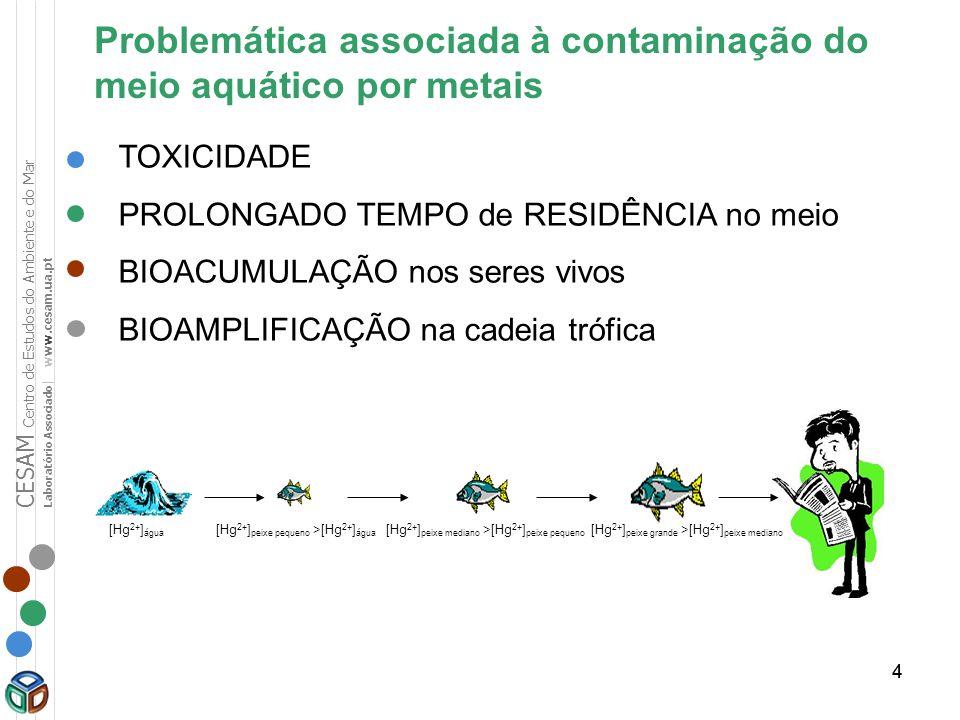 44 Problemática associada à contaminação do meio aquático por metais TOXICIDADE PROLONGADO TEMPO de RESIDÊNCIA no meio BIOACUMULAÇÃO nos seres vivos B