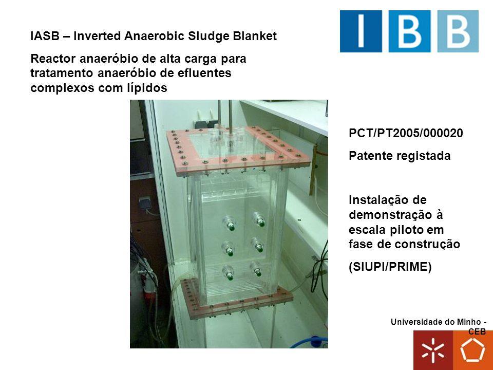 Universidade do Minho - CEB PCT/PT2005/000020 Patente registada Instalação de demonstração à escala piloto em fase de construção (SIUPI/PRIME) IASB –