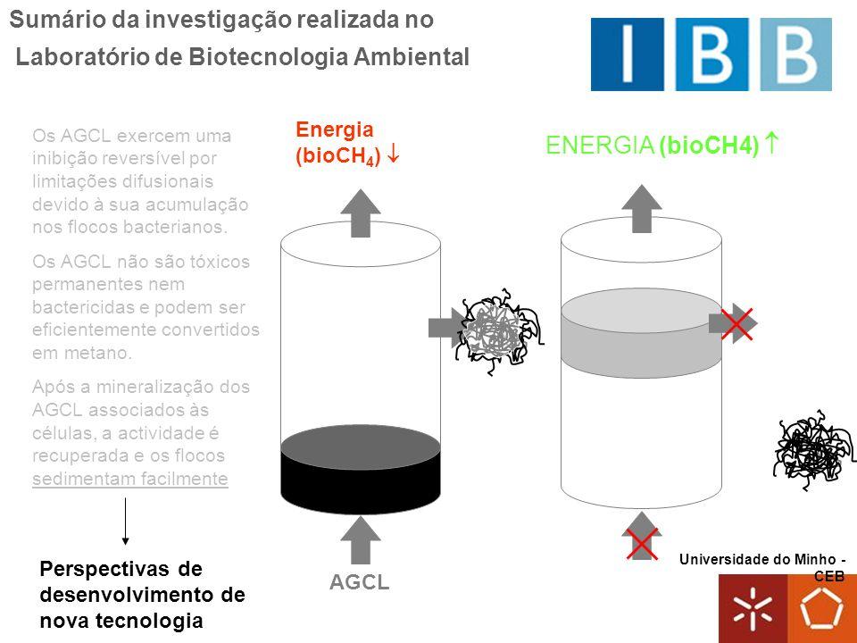 Universidade do Minho - CEB Sumário da investigação realizada no Laboratório de Biotecnologia Ambiental Os AGCL exercem uma inibição reversível por li