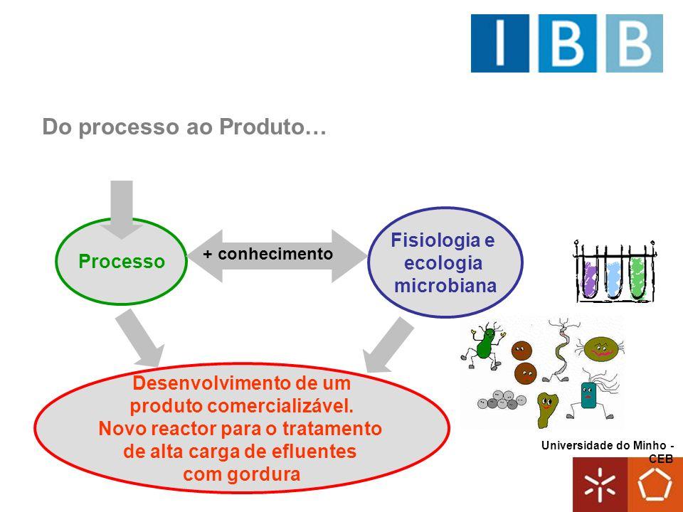 Universidade do Minho - CEB Do processo ao Produto… Processo Fisiologia e ecologia microbiana + conhecimento Desenvolvimento de um produto comercializ