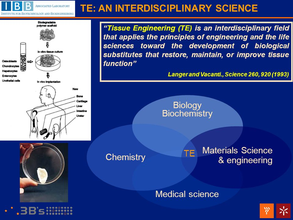 Tissue Engineering (TE) is an interdisciplinary field that applies the principles of engineering and the life sciences toward the development of biolo
