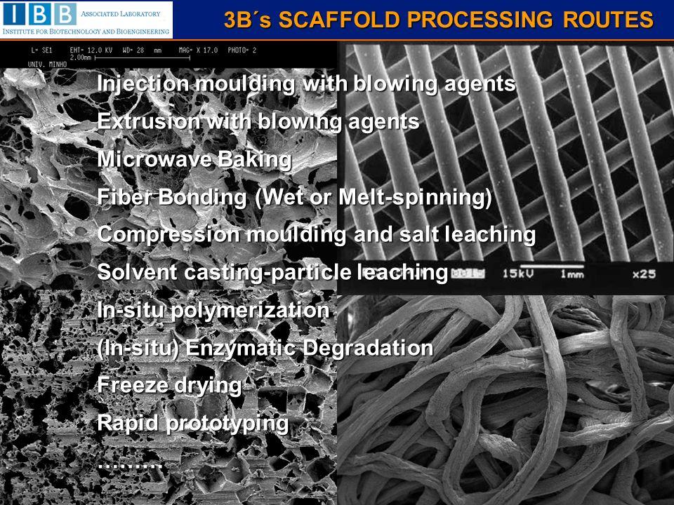 ceramic+chitosan bilayered scaffolds polyurethane sponge HA slurry burning chitosan solution freeze-drying pore size: 50 – 350 µm