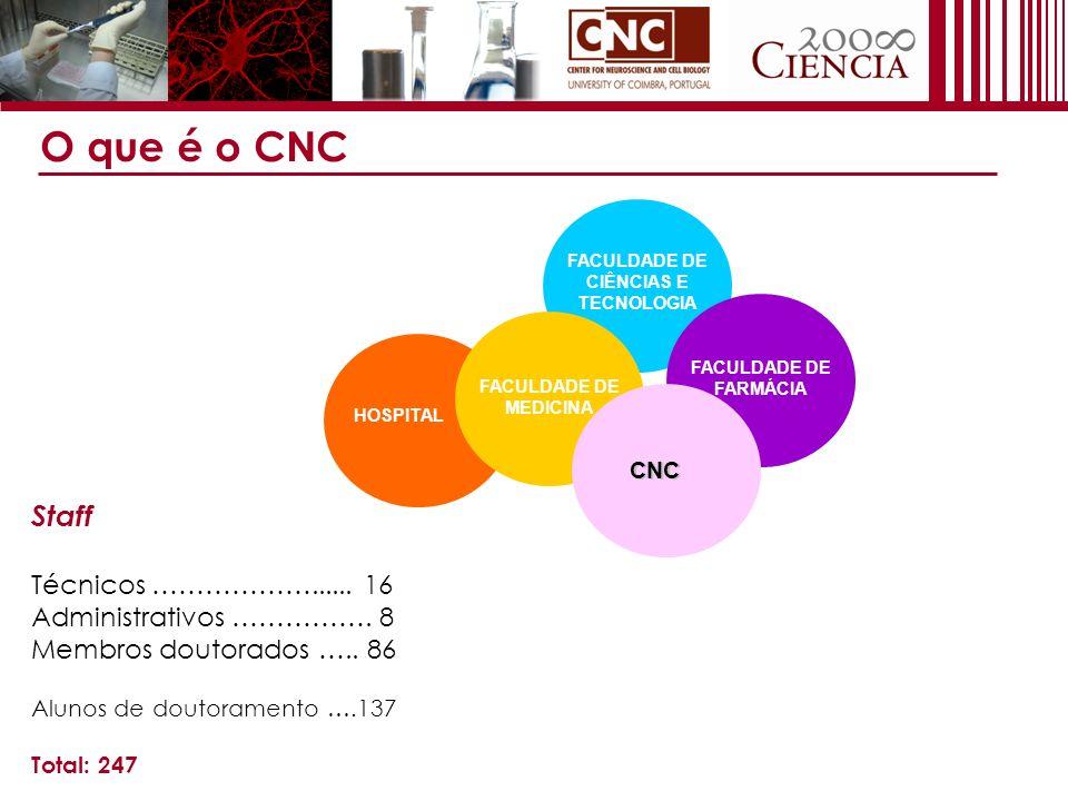 Plano estratégico do CNC Potenciar o impacto e a qualidade da investigação do CNC Identificar novos líderes de grupo que se comprometam a realizar investigação competitiva a nível internacional Estabelecer protocolos com outros centros de investigação Agir como catalizador de investigação competitiva em neurociências