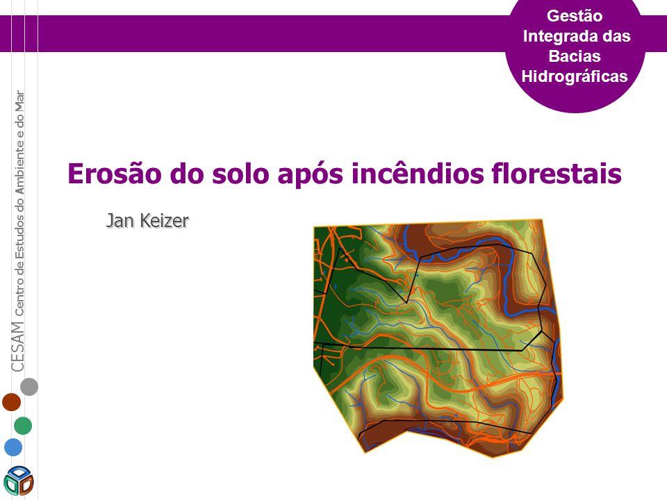 CESAM Centro de Estudos do Ambiente e do Mar Gestão Integrada das Bacias Hidrográficas Erosão do solo após incêndios florestais Jan Keizer