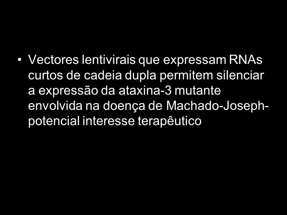 Vectores lentivirais que expressam RNAs curtos de cadeia dupla permitem silenciar a expressão da ataxina-3 mutante envolvida na doença de Machado-Jose