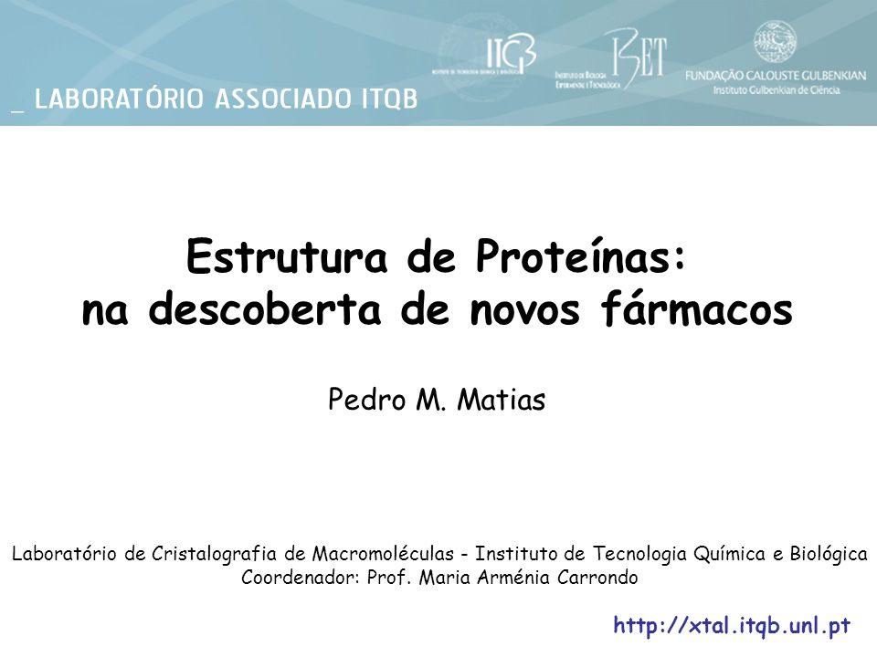 Estrutura de Proteínas: na descoberta de novos fármacos Pedro M. Matias Laboratório de Cristalografia de Macromoléculas - Instituto de Tecnologia Quím