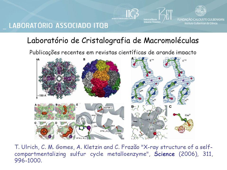 M.L. Rodrigues, T. Oliveira, I. A. C. Pereira and M.