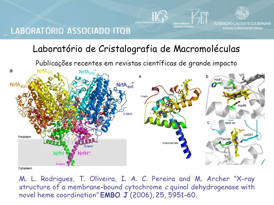 M. L. Rodrigues, T. Oliveira, I. A. C. Pereira and M. Archer X-ray structure of a membrane-bound cytochrome c quinol dehydrogenase with novel heme coo