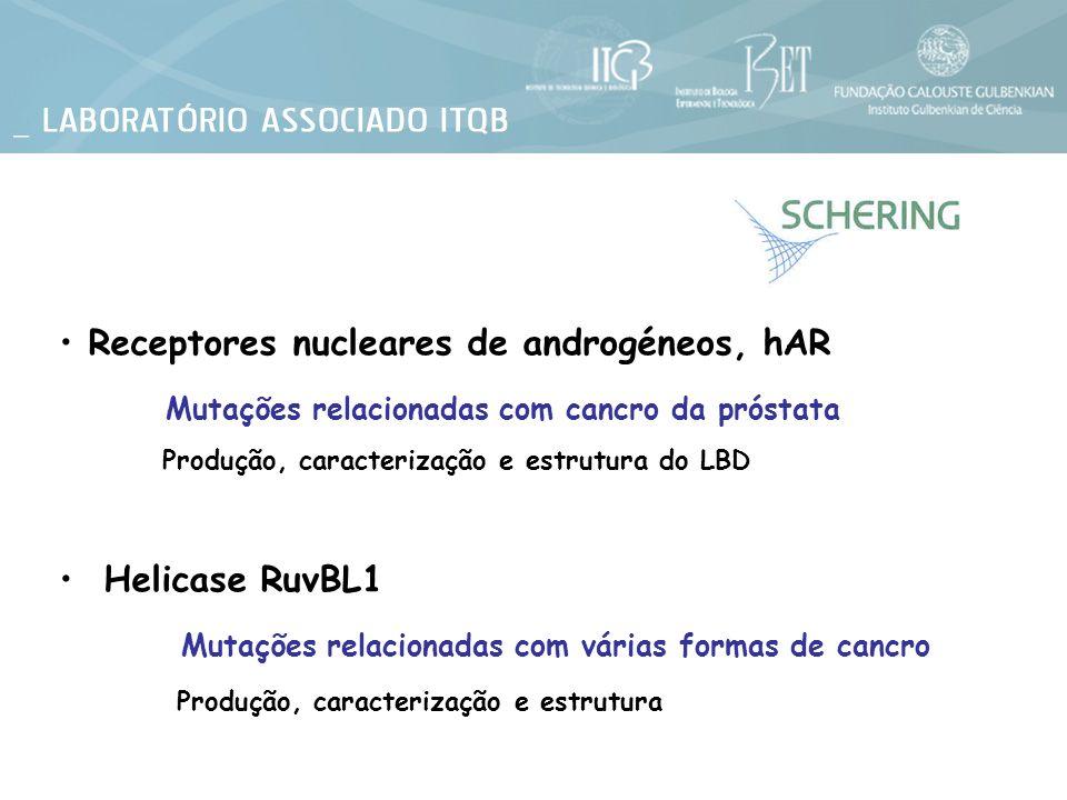 Receptores nucleares de androgéneos, hAR Mutações relacionadas com cancro da próstata Produção, caracterização e estrutura do LBD Helicase RuvBL1 Muta