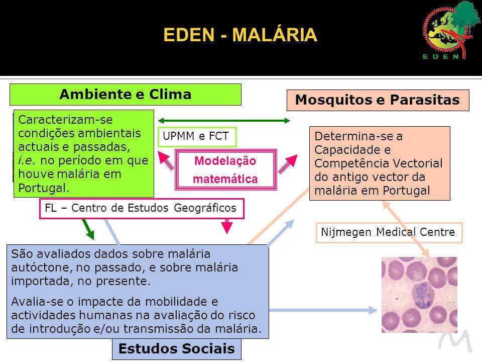 EDEN - MALÁRIA Ambiente e Clima Mosquitos e Parasitas Modelação matemática Estudos Sociais Determina-se a Capacidade e Competência Vectorial do antigo vector da malária em Portugal Nijmegen Medical Centre São avaliados dados sobre malária autóctone, no passado, e sobre malária importada, no presente.