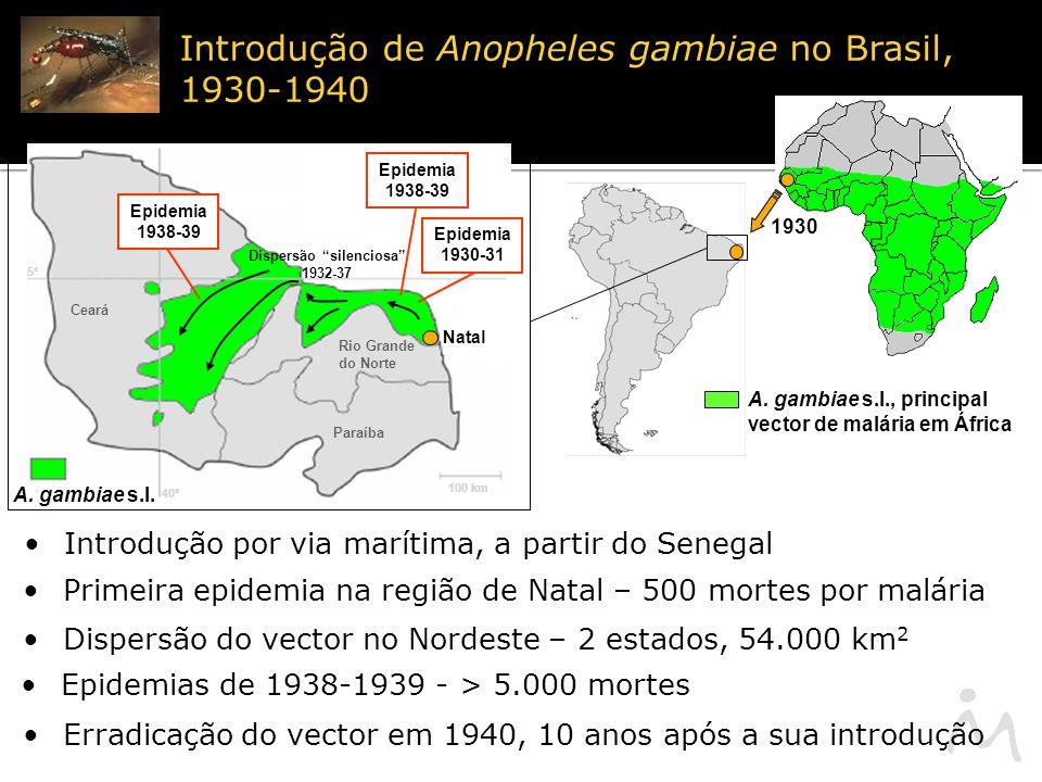 A.gambiae s.l.
