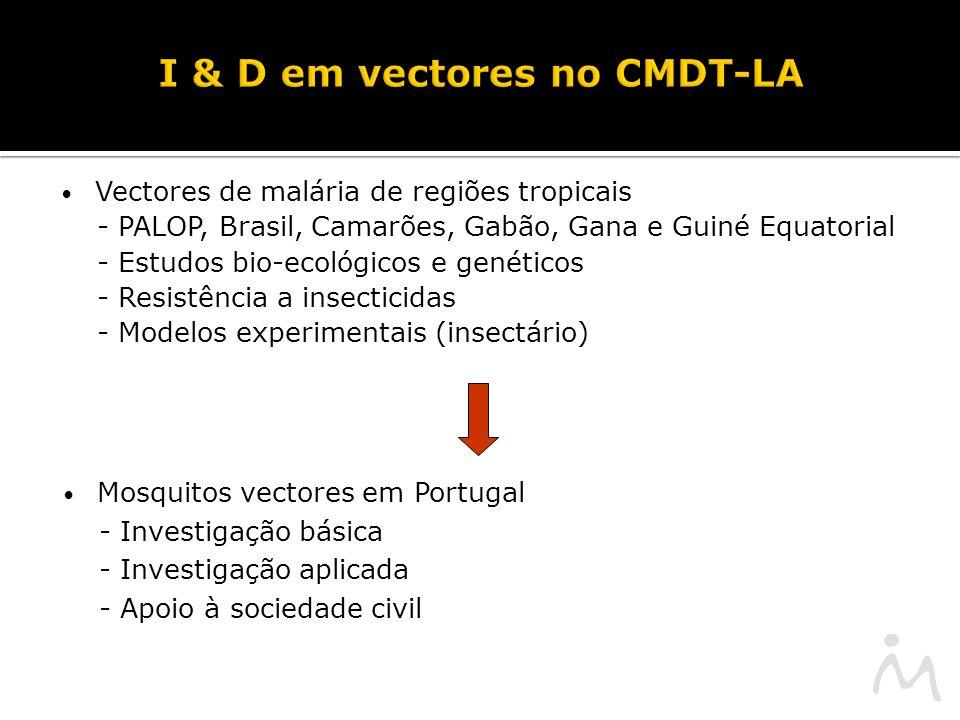 I & D em vectores no CMDT-LA Vectores de malária de regiões tropicais - PALOP, Brasil, Camarões, Gabão, Gana e Guiné Equatorial - Estudos bio-ecológicos e genéticos - Resistência a insecticidas - Modelos experimentais (insectário) Mosquitos vectores em Portugal - Investigação básica - Investigação aplicada - Apoio à sociedade civil
