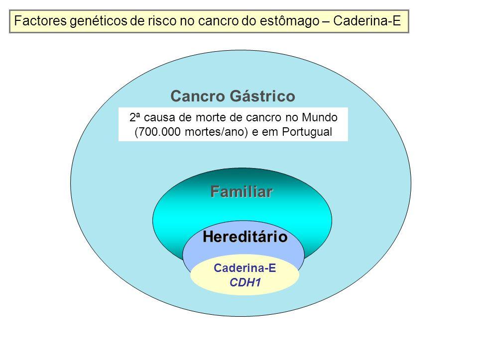 (+) (-) 118 (-)(+) (?) 61a 63a30a56a54a 29a 26a 18a 4a48a 21a (?) (+) (-) Portador com cancro gástrico difuso documentado CDH1 mutante Portador assintomático Portador assintomático com malformação da linha média CDH1 normal Evolução da doença.