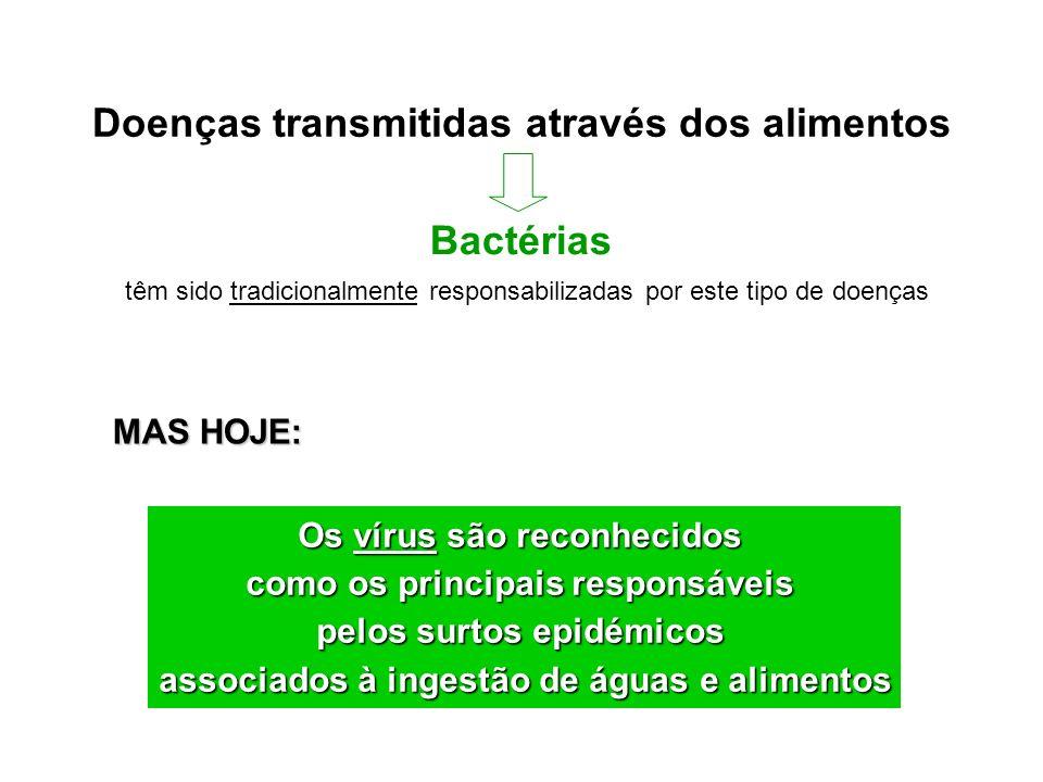 Doenças transmitidas através dos alimentos Bactérias têm sido tradicionalmente responsabilizadas por este tipo de doenças MAS HOJE: Os vírus são recon