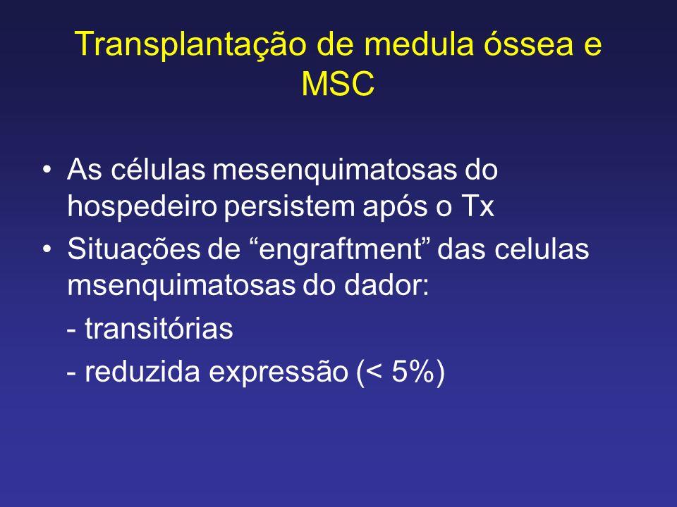 Transplantação de medula óssea e MSC As células mesenquimatosas do hospedeiro persistem após o Tx Situações de engraftment das celulas msenquimatosas