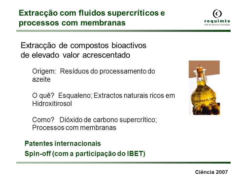 Ciência 2007 Despolimerização catalítica de resíduos de materiais plásticos Parceiros: REQUIMTE Petrobrás, Brasil Patente: E.