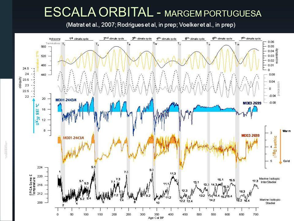 ESCALA ORBITAL - MARGEM PORTUGUESA (Matrat et al., 2007; Rodrigues et al, in prep; Voelker et al., in prep)