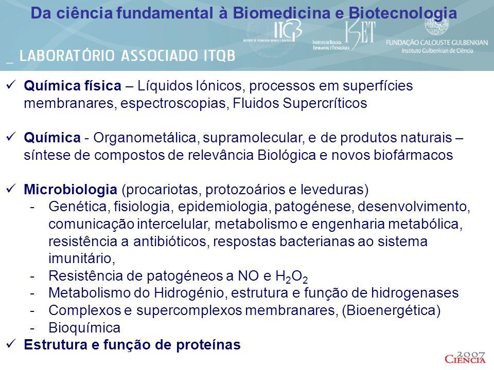 Bases genéticas do desenvolvimento e evolução de sistemas complexos Genética de doenças humanas complexas; Glicobiologia, folding de proteínas e doenças neurodegenerativas Neurociências Imunologia Desenvolvimento de terapias génicas e celulares Plantas – Desenvolvimento, ecofisiologia, stress biótico e abiótico Melhoramento de culturas de relevância económica Nacional Ensaios Clínicos para Biofármacos (Fase II) Nutracêuticos Encapsulação/Libertação................