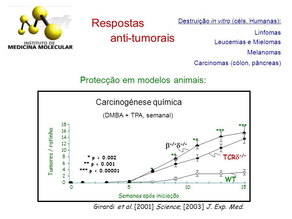 Destruição in vitro (céls. Humanas): Linfomas Leucemias e Mielomas Melanomas Carcinomas (cólon, pâncreas) Respostas anti-tumorais