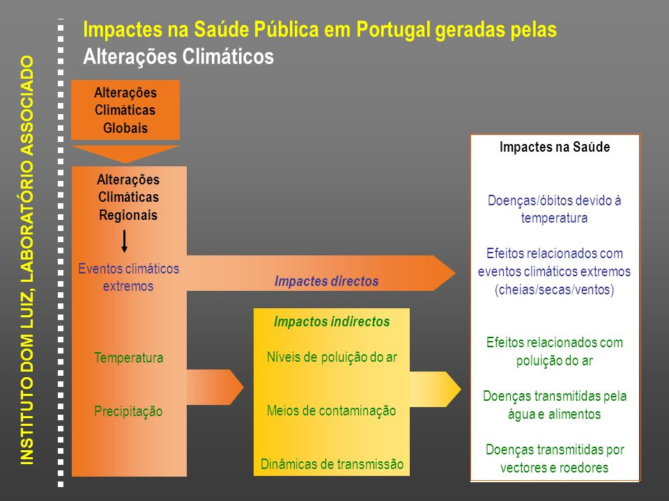 INSTITUTO DOM LUIZ, LABORATÓRIO ASSOCIADO Impactes na Saúde Pública em Portugal geradas pelas Alterações Climáticos Impactes na Saúde Doenças/óbitos d