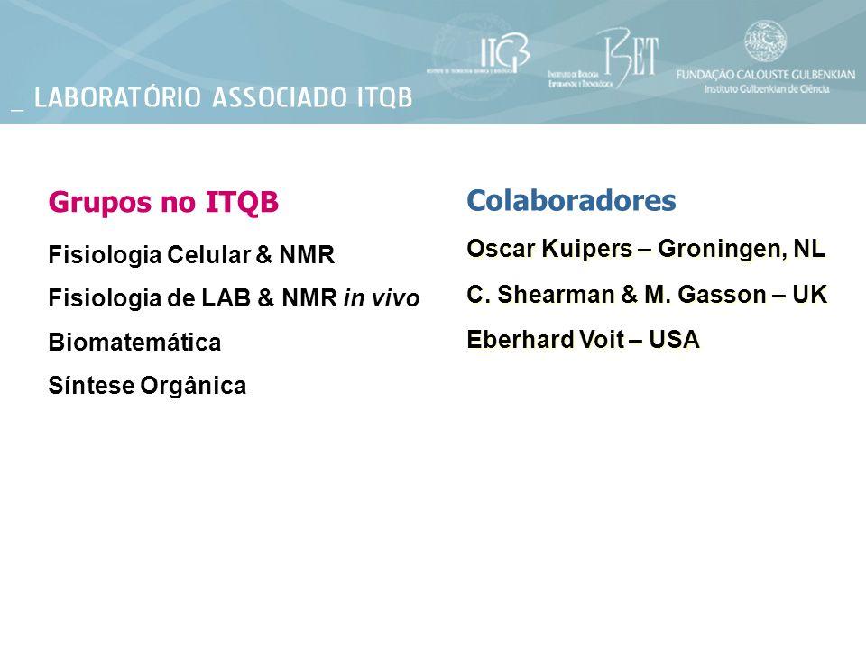 Fisiologia Celular & NMR Grupos no ITQB Fisiologia de LAB & NMR in vivo Biomatemática Síntese Orgânica Oscar Kuipers – Groningen, NL C. Shearman & M.