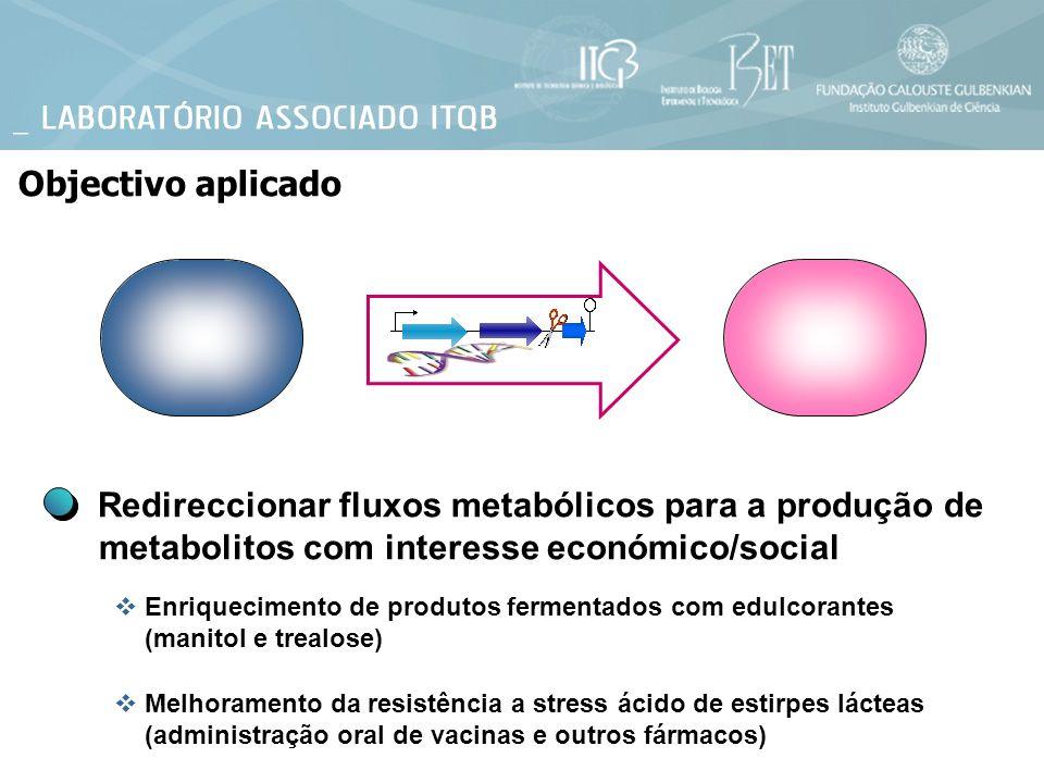 Objectivo aplicado Redireccionar fluxos metabólicos para a produção de metabolitos com interesse económico/social Enriquecimento de produtos fermentad