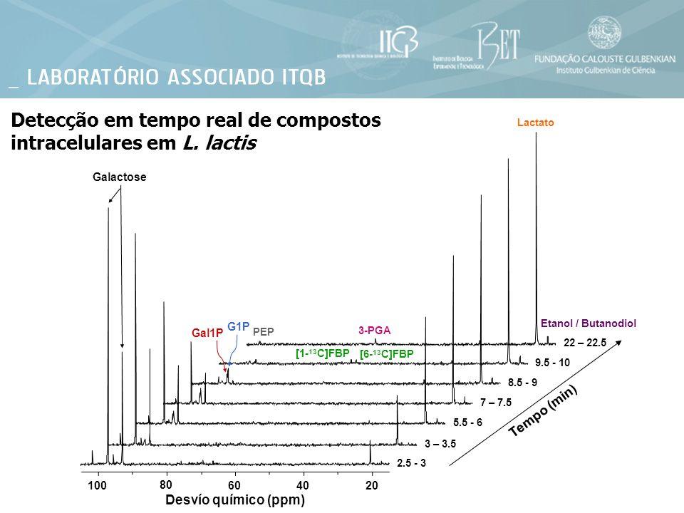 2.5 - 3 3 – 3.5 5.5 - 6 7 – 7.5 8.5 - 9 22 – 22.5 9.5 - 10 Detecção em tempo real de compostos intracelulares em L. lactis Desvío químico (ppm) Tempo