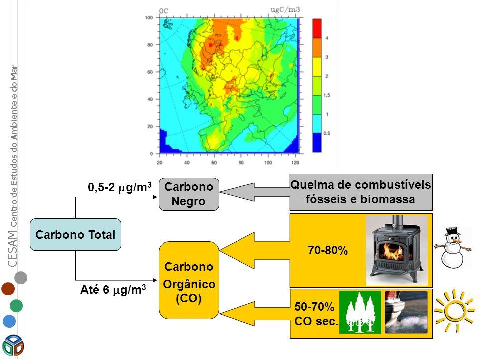 CESAM Centro de Estudos do Ambiente e do Mar Carbono Total 0,5-2 g/m 3 Até 6 g/m 3 Carbono Negro Carbono Orgânico (CO) Queima de combustíveis fósseis
