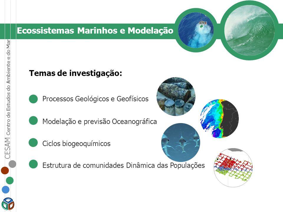 Ecossistemas Marinhos e Modelação Temas de investigação: Processos Geológicos e Geofísicos Modelação e previsão Oceanográfica Ciclos biogeoquímicos Es
