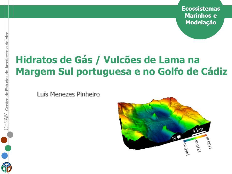 CESAM Centro de Estudos do Ambiente e do Mar Descobertos em 1999 (NRL / IGM / UA).