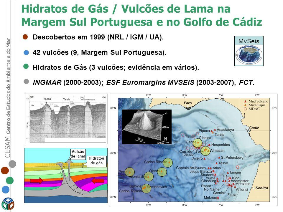 CESAM Centro de Estudos do Ambiente e do Mar MvSeis: Tectonic control, deep crustal structure, and fluid escape pathways in the Gulf of Cadiz Mud Volcano Field MvSeis Projecto Europeu Euromargins (LEC, ESF/FCT) (2003-2007).