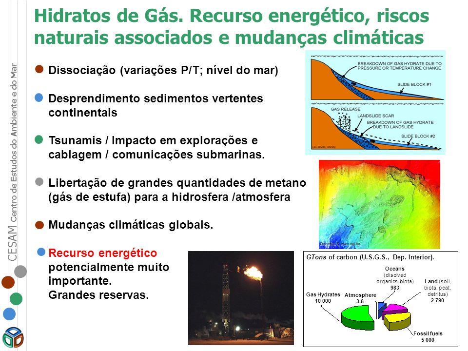 CESAM Centro de Estudos do Ambiente e do Mar Dissociação (variações P/T; nível do mar) Desprendimento sedimentos vertentes continentais Tsunamis / Imp