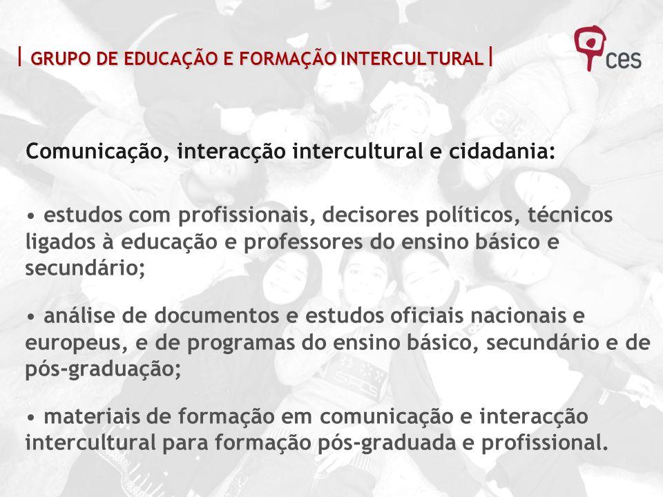 Comunicação, interacção intercultural e cidadania: estudos com profissionais, decisores políticos, técnicos ligados à educação e professores do ensino