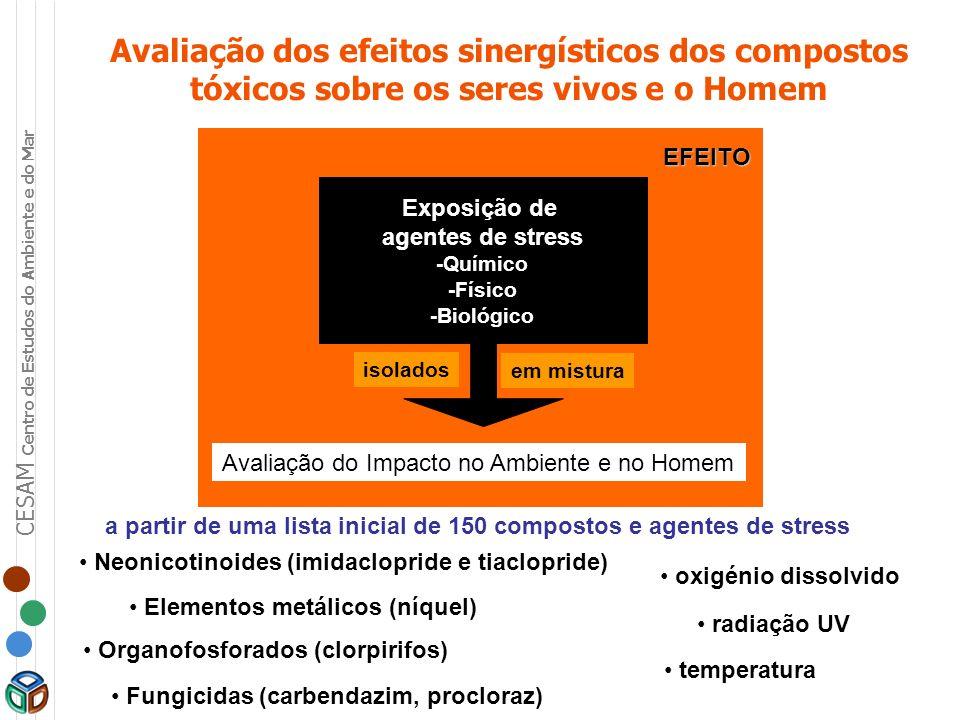 CESAM Centro de Estudos do Ambiente e do Mar Avaliação dos efeitos sinergísticos dos compostos tóxicos sobre os seres vivos e o Homem EFEITO Exposição