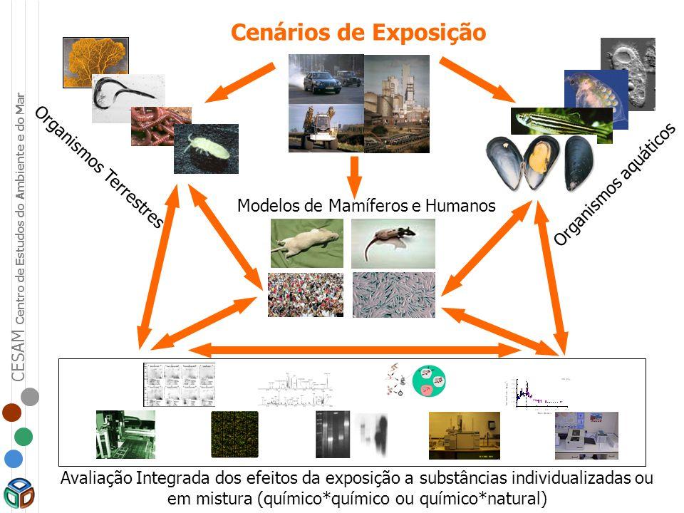 CESAM Centro de Estudos do Ambiente e do Mar Organismos Terrestres Organismos aquáticos Cenários de Exposição Modelos de Mamíferos e Humanos Avaliação