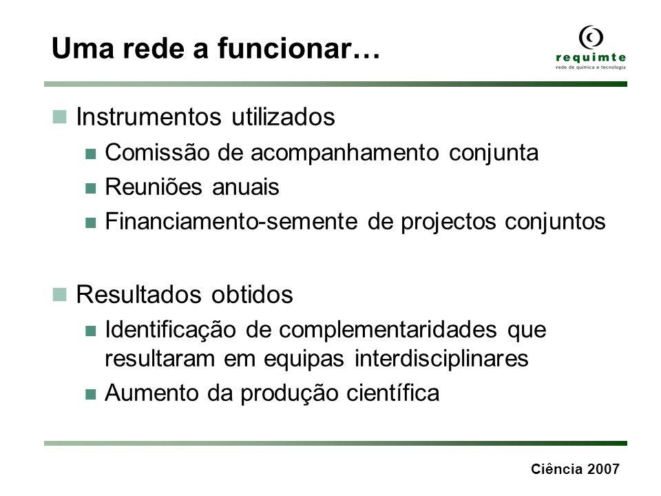 Ciência 2007 Uma rede a funcionar… Instrumentos utilizados Comissão de acompanhamento conjunta Reuniões anuais Financiamento-semente de projectos conj