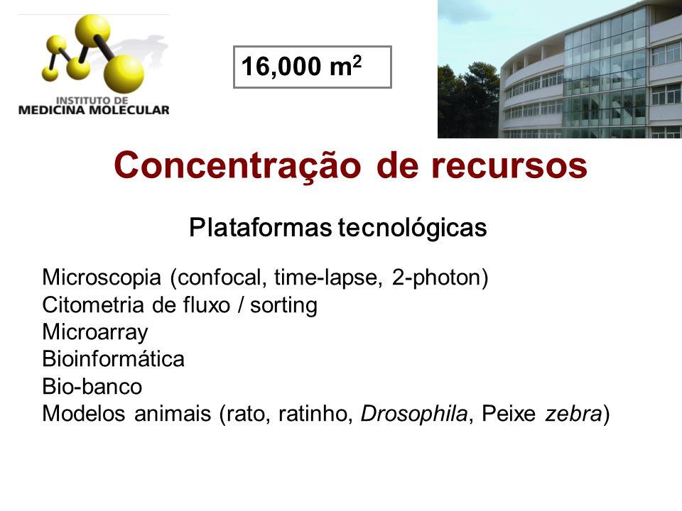 Concentração de recursos Plataformas tecnológicas Microscopia (confocal, time-lapse, 2-photon) Citometria de fluxo / sorting Microarray Bioinformática